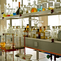 Petri Dish Glass 1pair