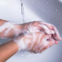 Soap (Chloroxylenol)